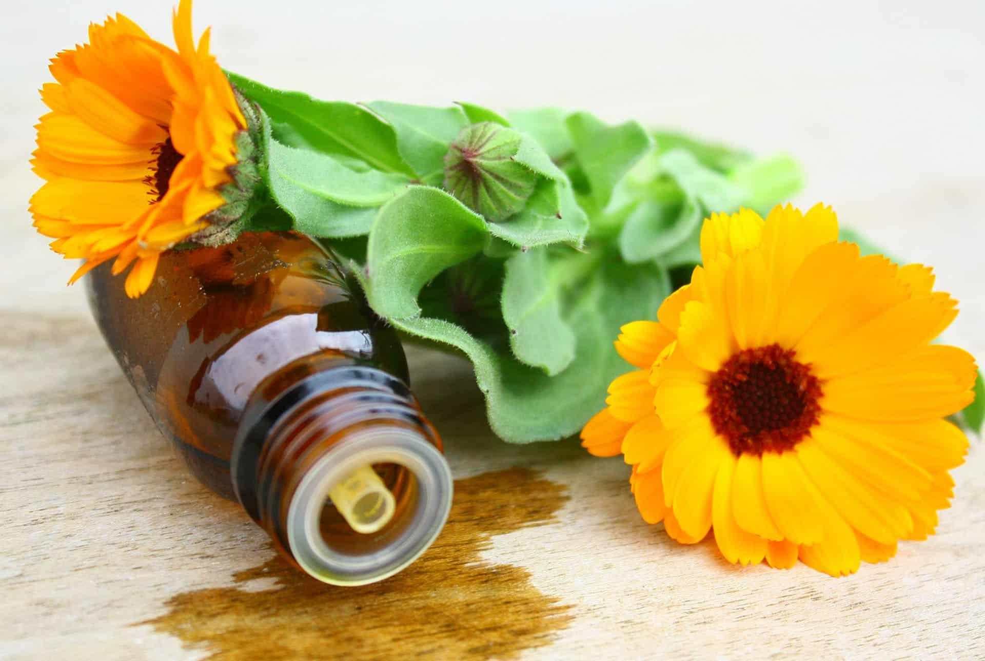 7 conseils pour renforcer vos d fenses immunitaires au bonheur d 39 essences. Black Bedroom Furniture Sets. Home Design Ideas