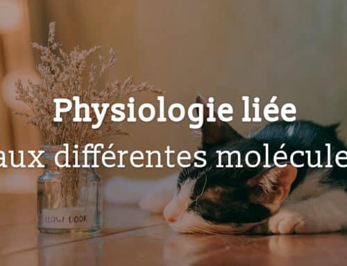 Physiologie liée aux différentes molécules